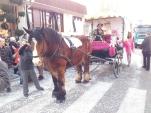 Historisch mit Pferd und Kutsche